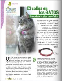 Publicacion Collares para Gato i Love Tokio Couture